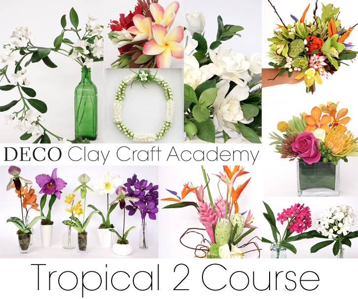 DECO_Tropical_2_Now_Available.WEB
